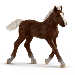 Schleich Black Forest Foal 13899