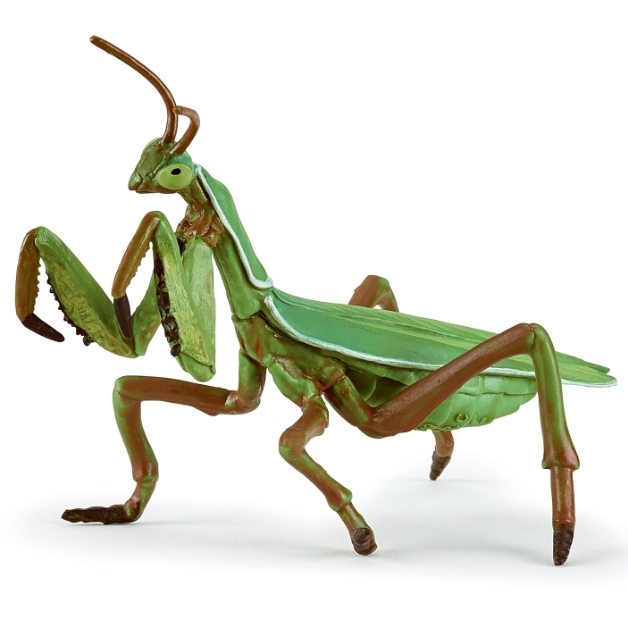 Papo Praying Mantis 50244