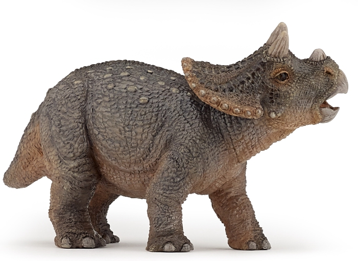 Papo Young Triceratops Dinosaur 55036